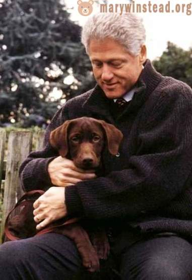 The first US dogs: Pets of American presidents from Harding to Obama