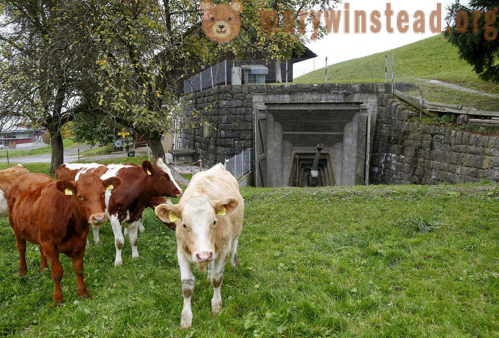 Secret bunkers and bomb shelters in Switzerland